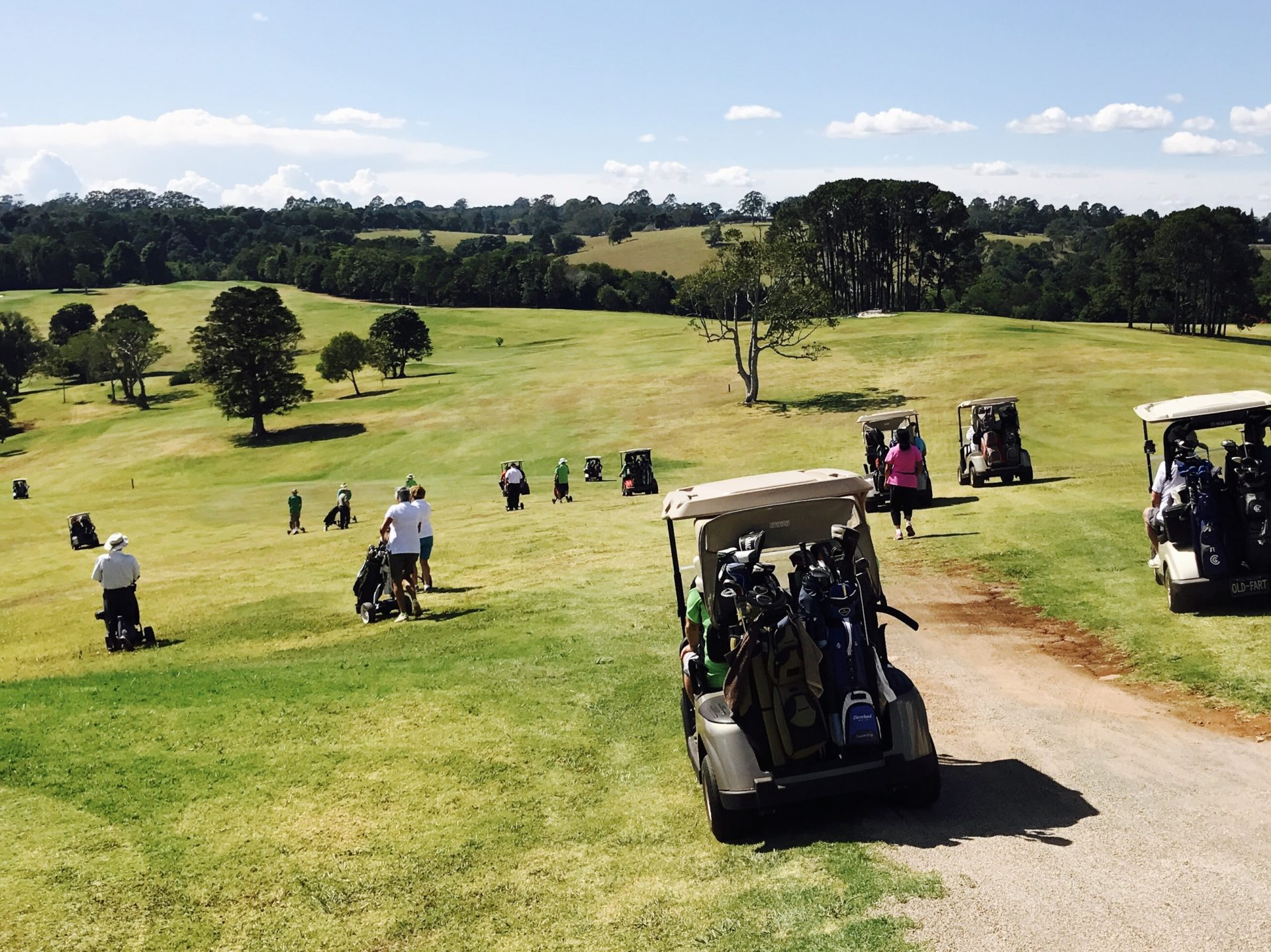 Maleny Golf Club - Aiming to drive business your way